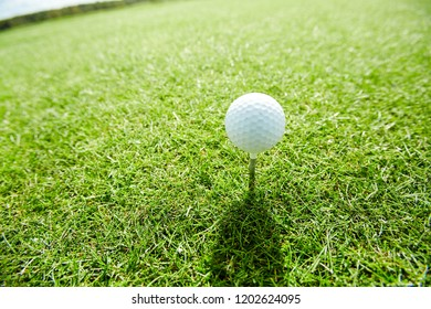 Golf ball on tee making shade on green play field on summer weekend