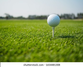 Golf ball on the tee. For golf, ready to hit on the green lawn.
