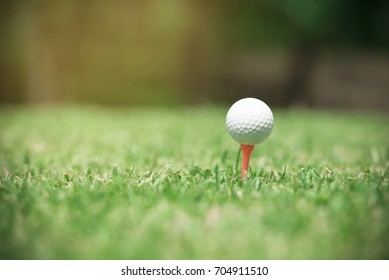 Golf ball on tee ready to be shot.Golf ball in green grass golf club yard background