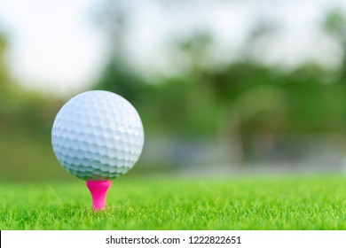 Golf ball with pink tee on green grass ready to play at golf course. with copy space