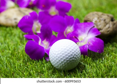 Golf ball and purple color on green grass