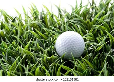 golf ball putting on green
