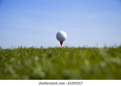 Golf ball tee up