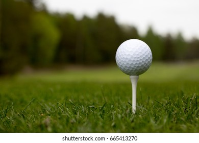 golf ball with tee on green course in summer
