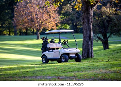 Golf cart parked. Trees in background.