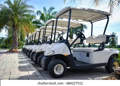 Golf carts and palm tree on blue.