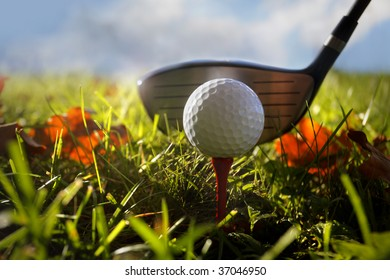 Golf club and ball in grass, autumn leaves, shallow focus