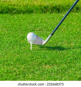 Golf club. Green golf field and ball in grass