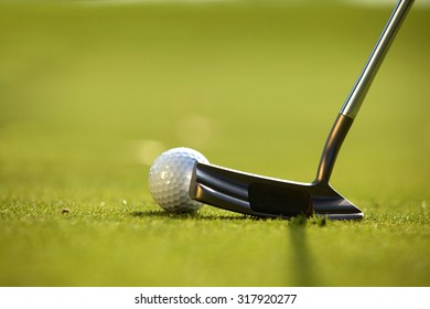 A golf club on a golf course