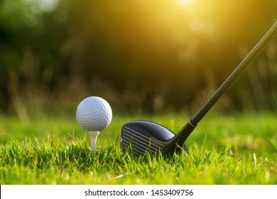 Golf clubs and golf balls on a green lawn in a beautiful golf course with morning sunshine.