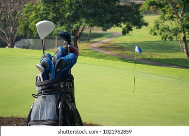 Golf clubs drivers with golf course.