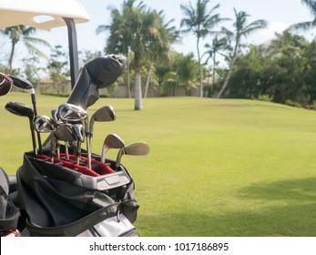 Golf clubs, field, lawn, game