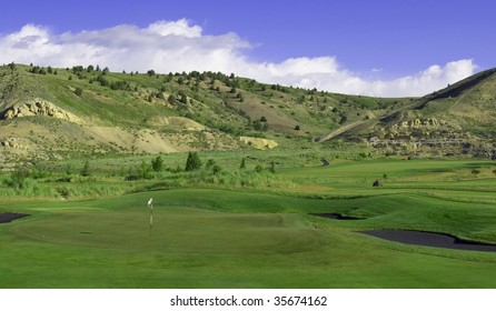 Golf Course with ball on the green and black sand traps.