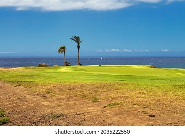 Golf course. Beautiful landscape of a golf court with palm trees on ocean background. Tenerife island. Canary. Spain