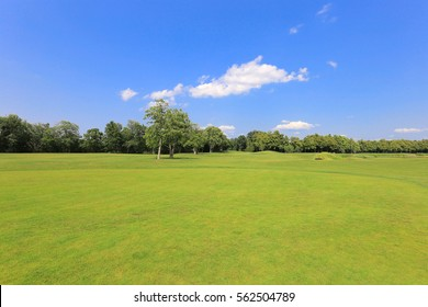 Golf course with blue sky. Field with trees