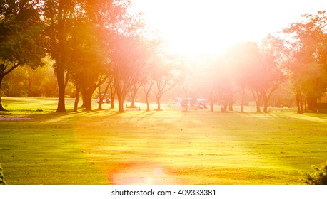 Golf course with golf cars under evening  sunny light / sunset on golf field