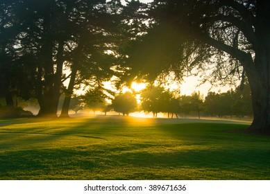 Golf course at dawn.