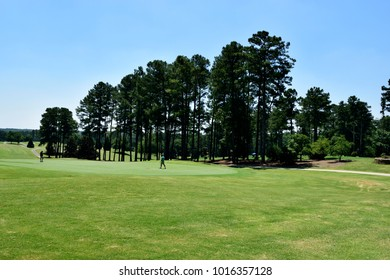 Golf course fairway greens background