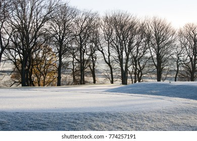 golf course frozen