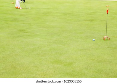 Golf course green and ball