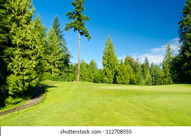 the golf course with green grass and trees over blue sky.