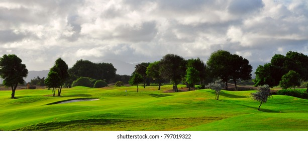 Golf course in Hawaii with Trees