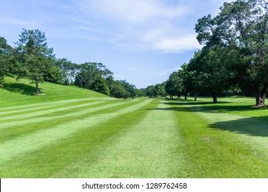Golf course hole fairway trees prestine towards  flagstick green scenic summer coastal course