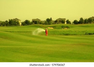 golf course landscape in summer