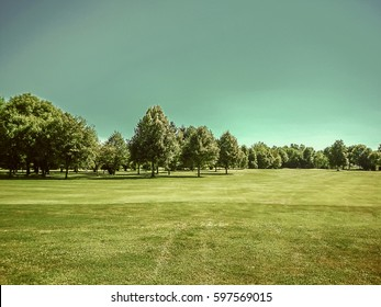 Golf course, natural green meadow with trees and blue sky