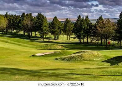 Golf Course on Springtime, Green golf field with trees and blue cloudy sky in background, England, UK