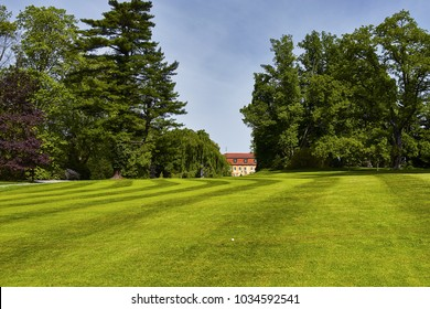 Golf course on summer day. Europe
