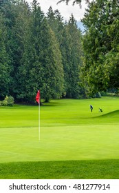 Golf course with red flag in front and green on background.