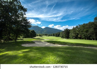 Golf course in summer