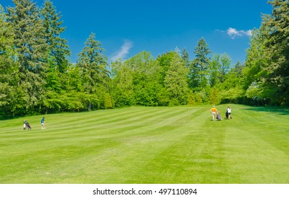 Golf course in a sunny day.