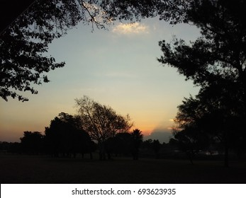 Golf Course Sunset framed by Trees
