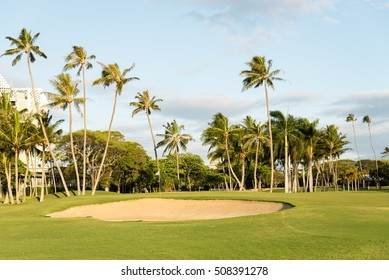 Golf course in tropical island surrounded by palm trees