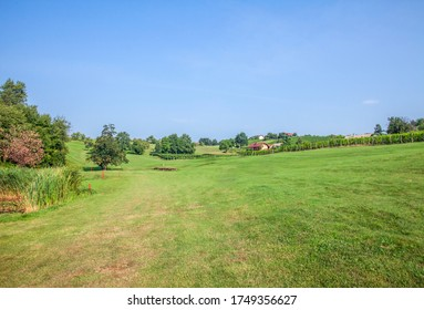 The golf course of Zlati Gric in Slovenia with vineyards and trees on a sunny day - Shutterstock ID 1749356627