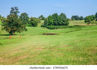 The golf course of Zlati Gric in Slovenia with vineyards and trees on a sunny day - Shutterstock ID 1749356675