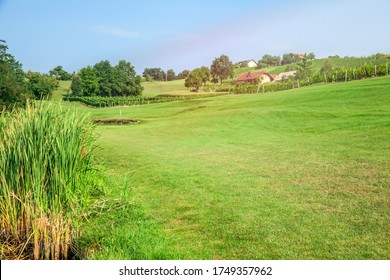 The golf course of Zlati Gric in Slovenia with vineyards and trees on a sunny day - Shutterstock ID 1749357962