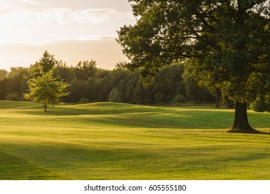 Golf courses during sunset