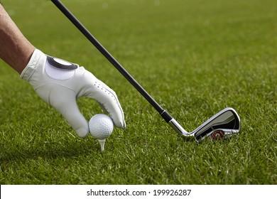 Golf Driver