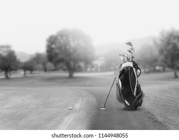 Golf equipment and golf bag , putter, ball on green and golf course as background.black and white.