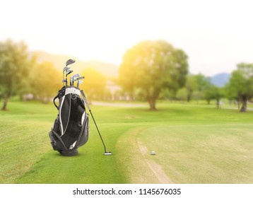 Golf equipment and golf bag , putter, ball on green and golf course as background.