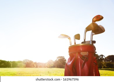 Golf equipment. Professional clubs in a leather baggage on golf course at sunny day.