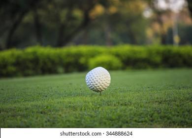 Golf field.