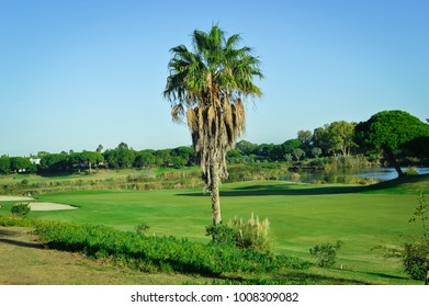 Golf field on sunny outdoors luxury lifestyle background