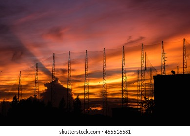 Golf field in silhouette image at sun set