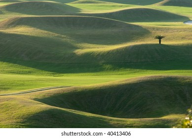 Golf place with beautiful green