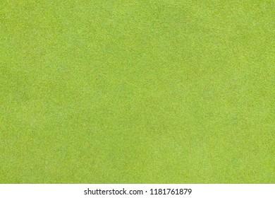 Golf putting green grass texture top view