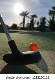 Golf Putting With Orange Ball on the Green. Palm Trees and Sun. Close up of putter and golf ball. Crazy golf and pitch and putt.